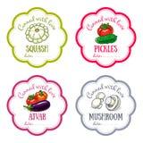 Sistema de etiquetas del vector con la verdura dibujada mano Imagen de archivo libre de regalías