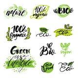 Sistema de, etiquetas engomadas, etiquetas, etiquetas con el texto producto natural, comida orgánica, sana Insignias del alimento Imagenes de archivo