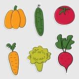 Sistema de etiquetas engomadas con las verduras dibujadas mano colorida Foto de archivo