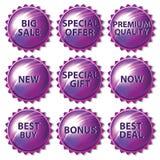 Sistema de etiquetas engomadas púrpuras en el fondo blanco Imagen de archivo