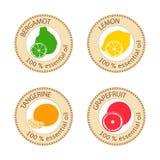 Sistema de etiquetas planas del aceite esencial El 100 por ciento Bergamota, limón, pomelo, mandarina Imagen de archivo