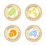 Sistema de etiquetas planas del aceite esencial El 100 por ciento Ylang-ylang, neem, neroli, anaranjado Fotografía de archivo libre de regalías