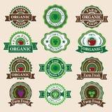 Sistema de etiquetas y de elementos orgánicos frescos Fotografía de archivo libre de regalías