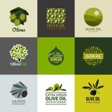Sistema de etiquetas y de emblemas del vector con la rama de olivo Fotos de archivo libres de regalías