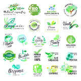Sistema de etiquetas y de insignias dibujadas mano de la acuarela para los cosméticos y la atención sanitaria