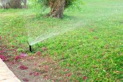 Sistema de extin??o de inc?ndios no jardim que molha o gramado Conceito molhando autom?tico dos gramados imagem de stock royalty free