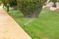 Sistema de extin??o de inc?ndios no jardim que molha o gramado Conceito molhando autom?tico dos gramados imagens de stock royalty free