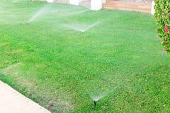 Sistema de extin??o de inc?ndios no jardim que molha o gramado Conceito molhando autom?tico dos gramados imagens de stock