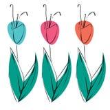 Sistema de flores, de hojas y de plantas del bosquejo Foto de archivo libre de regalías
