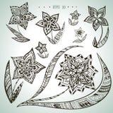 Sistema de flores ornamentales dibujadas mano del vector Fotos de archivo libres de regalías