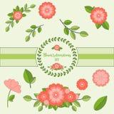 Sistema de flores rosadas y de hojas aisladas y agrupadas juntas Imágenes de archivo libres de regalías