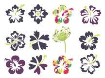 Sistema de flores tropicales Foto de archivo libre de regalías
