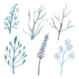 Sistema de flores y de ramas Stock de ilustración