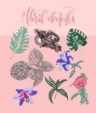 Sistema de flores y de hojas en un estilo realista y decorativo Stock de ilustración