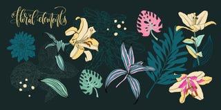 Sistema de flores y de hojas en un estilo realista y decorativo Ilustración del Vector