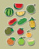 Sistema de fruta del vector Imágenes de archivo libres de regalías