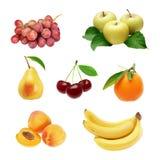 Sistema de frutas Imagen de archivo libre de regalías