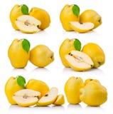 Sistema de frutas maduras del membrillo con la hoja y la rebanada aisladas Fotografía de archivo