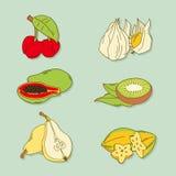 Sistema de frutas tropicales a mano Imagen de archivo