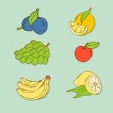 Sistema de frutas tropicales a mano Foto de archivo