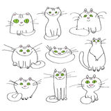 Sistema de gatos del blanco del vector Fotografía de archivo