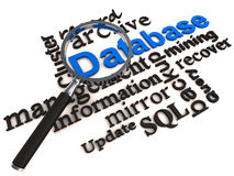 Sistema de gestión de la base de datos del DBMS Imagen de archivo libre de regalías