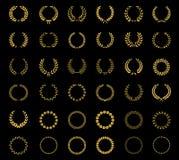 Sistema de guirnaldas y de bastidores florales del trigo del laurel Fotos de archivo libres de regalías