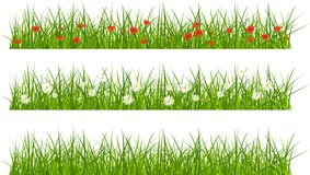 Sistema de hierba de las banderas Imagen de archivo libre de regalías