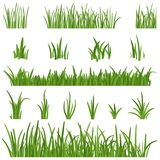 Sistema de hierba verde aislado en el fondo blanco Elementos del diseño de las alturas de la hierba de la naturaleza Vector del c Fotografía de archivo