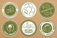 Sistema de hipoalérgico, reciclable, eco amistoso, insignias orgánicas, iconos, disposiciones de la etiqueta engomada Imagen de archivo