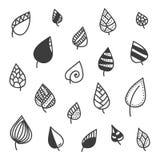 Sistema de hojas del garabato en el fondo blanco Imagen de archivo libre de regalías