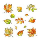 Sistema de hojas de otoño brillantes, illustrstion estilizado del vector fotografía de archivo libre de regalías