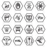 Sistema de Honey Icons Imagenes de archivo