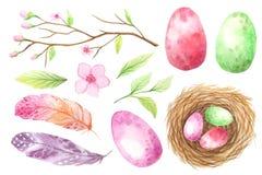 Sistema de huevo y de plumas coloridos de la acuarela