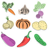 Sistema de iconos coloridos de las verduras Libre Illustration