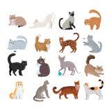 Sistema de iconos con los gatos Vector plano del diseño stock de ilustración