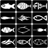Sistema de iconos creativos de los pescados blancos en negro Fotografía de archivo