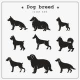 Sistema de iconos de la raza del perro ilustración del vector