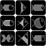 Sistema de iconos de los pescados blancos del vector en fondo negro Foto de archivo libre de regalías