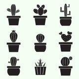 Sistema de iconos del cactus del vector Foto de archivo