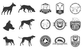 Sistema de iconos del perro, de etiquetas y de elementos del diseño Fotografía de archivo