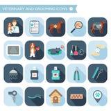 Sistema de iconos del veterinario y de la preparación con nombres Diseño plano con las sombras Vector Imagen de archivo libre de regalías
