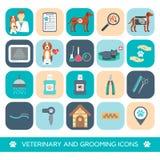 Sistema de iconos del veterinario y de la preparación Diseño plano Vector Foto de archivo libre de regalías
