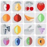sistema de iconos, fruta, estilo plano stock de ilustración