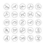 Sistema de iconos lineares fitball del ejercicio Foto de archivo