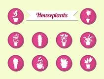 Sistema de iconos planos del vector Plantas de la casa Ilustración Imagen de archivo libre de regalías