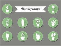 Sistema de iconos planos del vector Plantas de la casa Ilustración Fotografía de archivo libre de regalías