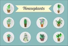 Sistema de iconos planos Plantas de la casa Ilustración Imagen de archivo libre de regalías