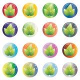 Sistema de iconos redondos abstractos del eco del color bajo la forma de arco de cristal con las hojas Foto de archivo libre de regalías