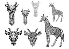 Sistema de imágenes con las jirafas en las líneas para los tatuajes, las impresiones o los fondos libre illustration